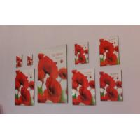 China Clip photo frames, collage photo frames, clip snap photo frame on sale