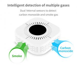 China Home Gas Alarm High Sensitivity Carbon Monoxide Sensor Smoke And CO Alarm on sale