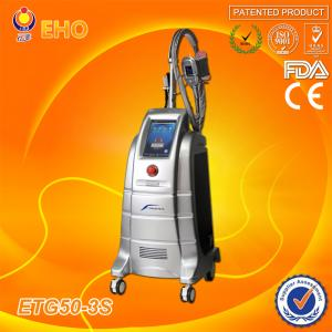 China Cellulite reduction Lipo cryo cryolipolysis with antifreeze membrane on sale