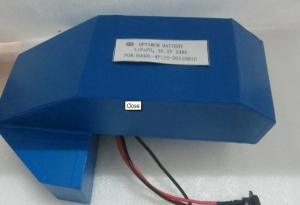 China Lithium Iron Phosphate Batteries 36V-20Ah With Charger And Electric Gardon Tools on sale