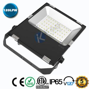China Die Casting Aluminum Shell 50W 120LM/W SMD LED Floodlight With  SMD3030 Chips on sale