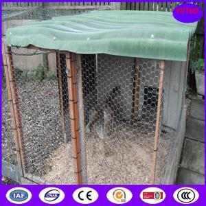 China PVC Coated & Galvanized Chicken Hexagonal Wire Mesh on sale