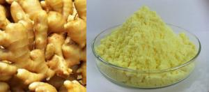 China 100% Natural Ginger Root Extract Solvent Extraction Yellowish Brown Fine Powder on sale