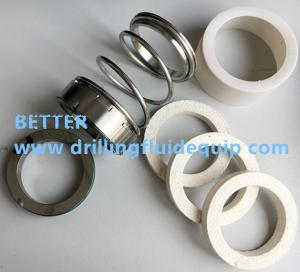 China Mechanical Seal with Teflon Packings p/n P25MS/TT for MCM 250 Centrifugal Pump on sale