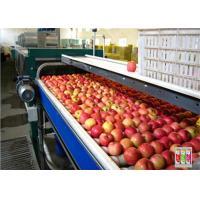 Electric 20T/H Bottled Orange Juice Production Line Automatic