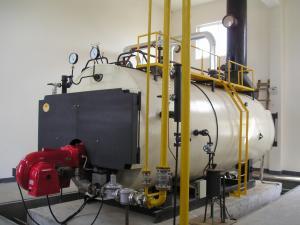 China le best-seller 2011 chaudière à eau chaude à gaz en bois de vapeur de 8 tonnes on sale
