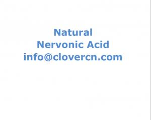 China Nervonic Acid from Acer truncatum Bunge Seed Oil Cas: 506-37-6 A Clover Nutrition Inc-ACN on sale