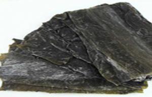 China Seafood Green Fresh Dried Kelp Seaweed Silk Rich In Algae Aroma / Vitamin on sale