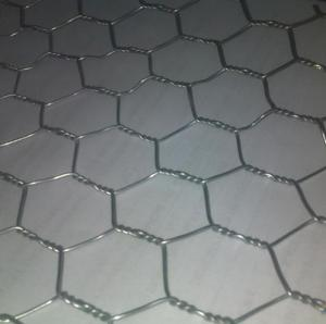 China Hexagonal wire mesh for chicken  wire mesh on sale