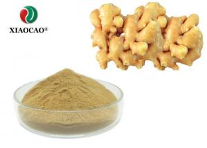 China Food Additive Pure Ginger Extract Powder / Nature Ginger Root Extract Powder on sale