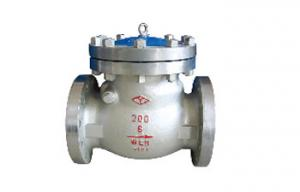 China ANSI Swing Check Valve on sale