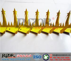 China PVC powder Wall Spike, Stainless Razor Wall Spike, Hot Dipped Galvanised Wall Spike System on sale