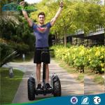 China Audlt Off Road Two Wheels Self Balancing Electric Scooter Segway Type Multi Color wholesale