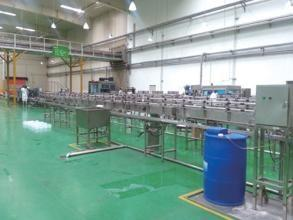China RO Drinking Water Treatment Plant Auto Packaged Mineral Water Plant Machinery on sale