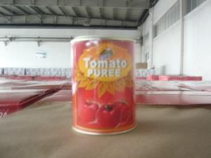 China canned tomato puree / same as Watties 575g*12 on sale