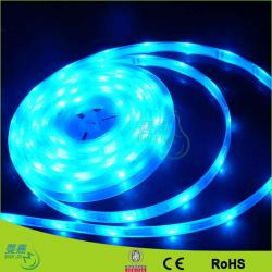 ... China Blue / Red / Green Led Rope Lights For Hospital Decoration ,  120leds/M