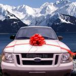 15 grande curva de Pom Pom do casamento do tamanho em materiais grossos dos PP ou do ANIMAL DE ESTIMAÇÃO para a decoração em um carro