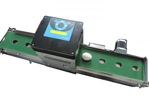 China Easy Operating Egg Stamping Machine With Computer Control Shuttle Conveyor on sale