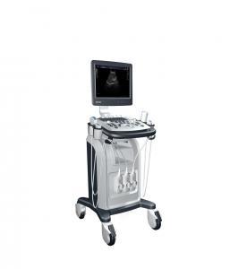 China General Imaging Mobile Ultrasound Scanner , B / W Digital Ultrasound Scanner on sale