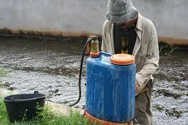 China Pest Control Equipment Knapsack sprayers on sale