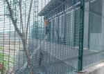 Weld Mesh Security Fencing / Security Mesh Fence Panels For Psychiatric Hospital