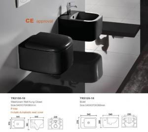 Top Sale Rimless Wall Mount Wc Back To Wall Toilet Pan With Bidet