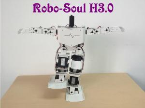 Robotics Equipment Large Torque Digital Servo Support 17 Dof