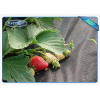 Black Permeable Non Woven Landscape Fabric For Ground Control / Strawberry