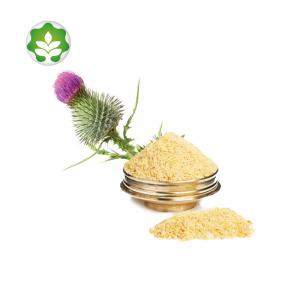 China wholesale milk thistle silymarin marian powder milk thistle seed extract powder for live cancer on sale