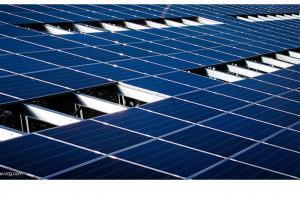 China Safety 300 Watt Poly Solar Panel , Solar Pv Modules 1956 X 992 X 50 Cm on sale