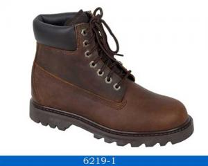 China 6219 Goodyear safety shoes on sale