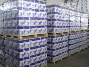 China We have A4 paper 80 gsm and 70 gsm also we have A3 paper A4 paper in roll. supplier
