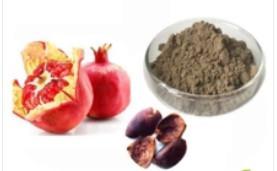 China 99% Cosmetic Raw Materials Ellagic Acid Powder CAS 476 66 4 For Comestic Food on sale