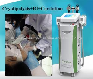 China Cryo lipo reduction/ fat loss machine China professional manufature 5 handles on sale