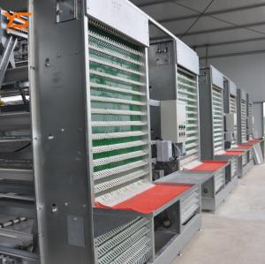 China Automatic Chicken Egg Collection Machine/Chicken Poultry Equipment Tel:+15638238763 on sale