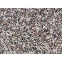 Granites Natural Stone Slabs Polished Finish 240up X1200up X 2cm Big Slabs