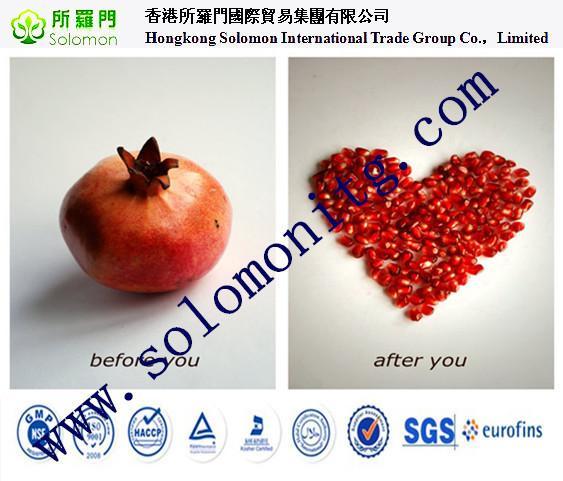 Pomegranate Peel Extract Powder Pomegranate P E Pomegranate Extract 10:1 Ec91131793