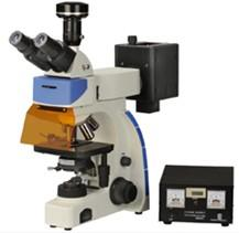 China 10X - 1000X plan achromatic optical system Laboratory Fluorescence Microscopes MF300 on sale