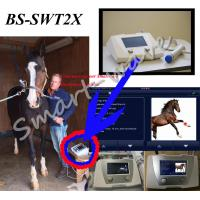 Veterinary Treat Equine Shockwave Therapy Machine For Superficial Orthopedic Disorders