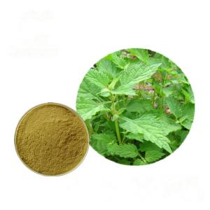 China Plant Pure Natural Isodon Rubescens Extract 0.5% - 98% Oridonin Powder on sale