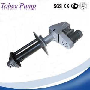 China Tobee™ Rubber Lined Vertical Slurry Pump on sale
