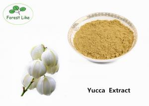 China Odor Removing Yucca Schidigera Extract 60% Sarsaponin Plant Extract Powder on sale