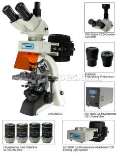 China Fluorescence Trinocular Microscope , 40X - 1600X A16.0802 Compound Microscopes on sale