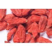 High Grade Ningxia Medlar And Organic Wolfberry Fruit / Dried Goji Berries
