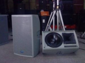 China 124dB 400W 8ohm 15'' Woofer 50Hz - 18KHz NEUTRIK NL4 Pro Theatre Sound Speaker Equipment supplier
