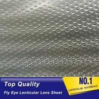 fly eye lenticular sheet small dot lens sheet film lenticular to led light diffuser plate 3d 360 degrees fly eye film