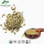 China Hand Picking Factory Supply Natural Fennel Seed Extract wholesale