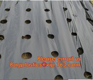 China Agricultural Perforated Biodegradable Mulch Film on sale