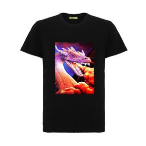 China Cool 3D Flip Effect  T-shirt 100% Cotton Soft Material For Printing  3D Artwork on sale