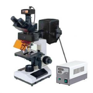China 9.0MP Digital Camera Laboratory Epi Fluorescent Microscope in Oncology Hematology/ Cheap priceEpi fluorescent microscopy on sale